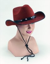 Brown Felt cowboy hat with studs BH367