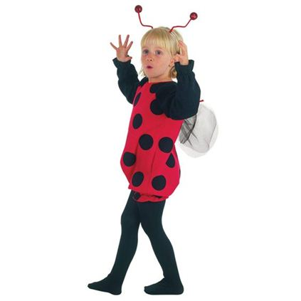 Ladybird toddler costume 2-3 years cc015